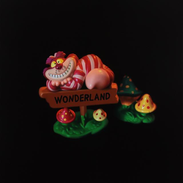 , 'Cheshire Cat,' 2016, Galerie de Bellefeuille