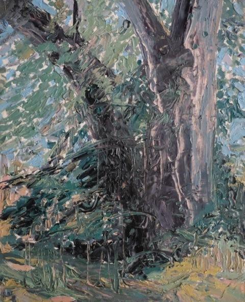 Herald Nix, 'Untitled (Elm Tree #3)', 2018, Wilding Cran Gallery
