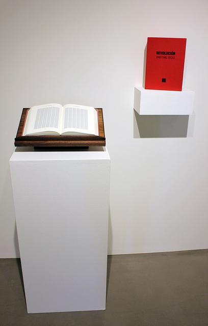 , 'Revolucion: Una y Mil Veces,' 2011, Lisa Sette Gallery