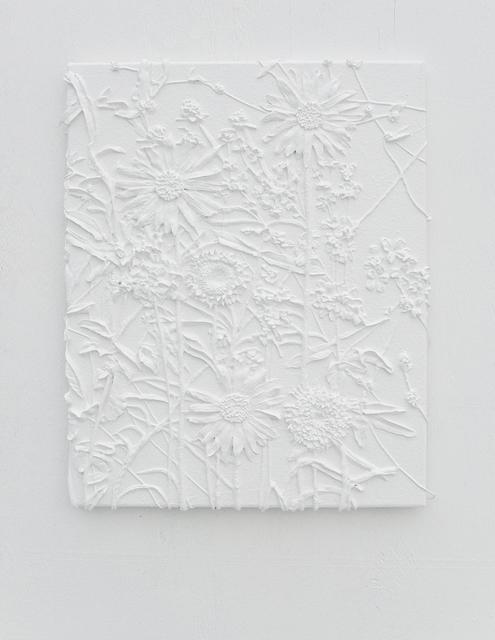 , 'Hyperaccumulators,' 2017, VALENTIN