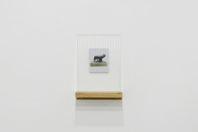 , ' Dispositivo per non vedere bene - Lupa #2, Bologna,' 2017, MATÈRIA