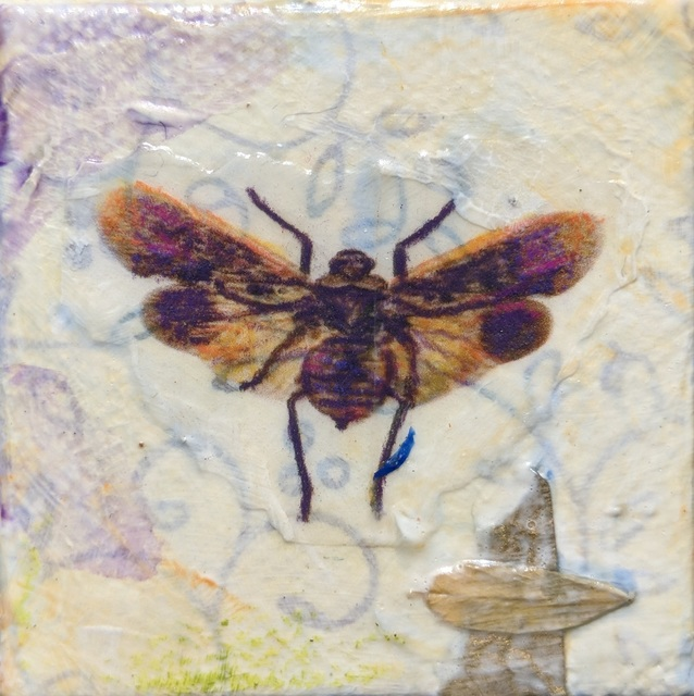 , 'Lantern Fly,' , Sparrow Gallery