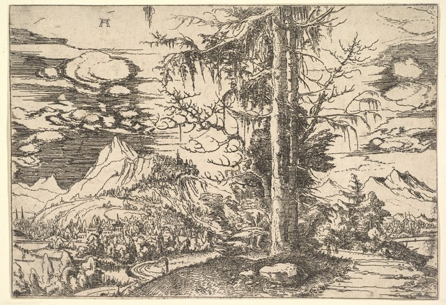 Albrecht Altdorfer, 'Landscape with a Double Spruce in the Foreground', ca. 1521–1522, The Metropolitan Museum of Art