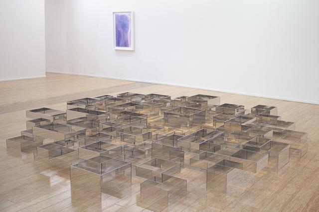 , 'Field Study,' 2019, Dominik Mersch Gallery