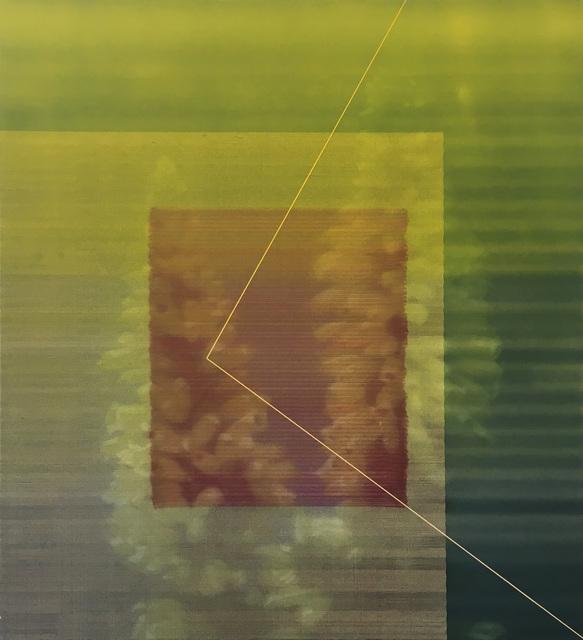 James Cousins, '206 Erica 'C avendishiana'', 2012, Gow Langsford Gallery