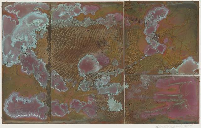 Karen Lee Sobol, 'Sea Change, Blowing', 2004, Print, Copper Relief, Childs Gallery