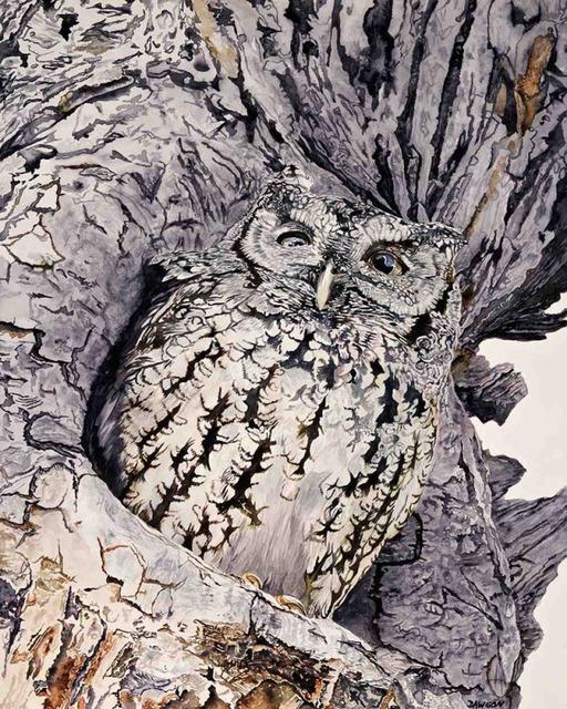 , 'Screech Owl I,' 2018, Wally Workman Gallery