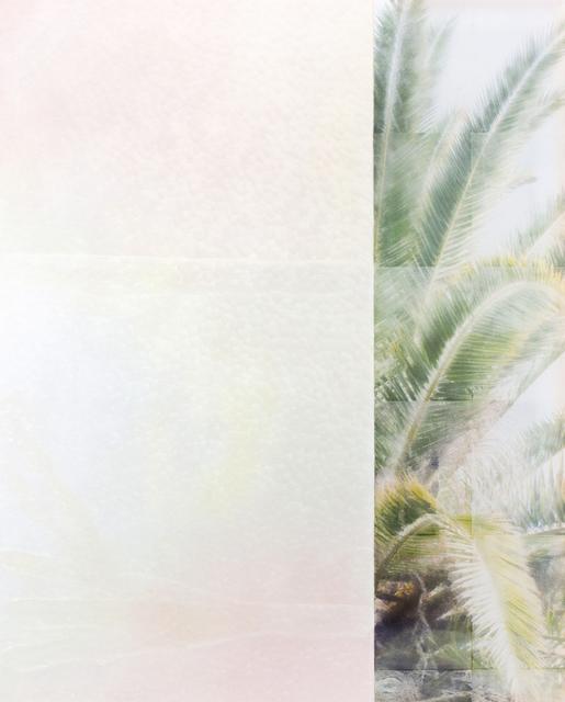 , 'Nature is good #2,' 2016, Kristin Hjellegjerde Gallery