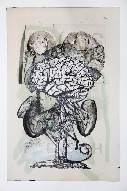 , 'Fleisch,' 2013, Galerie Elisabeth & Klaus Thoman