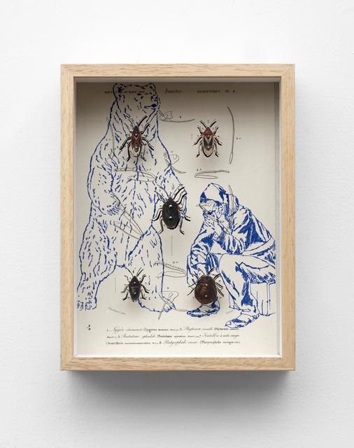 , 'MIGRAZIONI HEMIPTERES PL.4 ,' 2017, Galerie Italienne