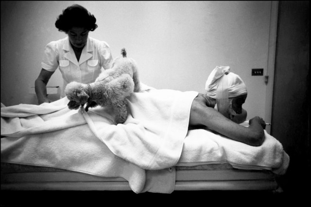 , 'Actress Joan Crawford, during a massage session, with her poodle walking over her back, at home in Hollywood. Hollywood, California. USA.,' 1959, Magnum Photos
