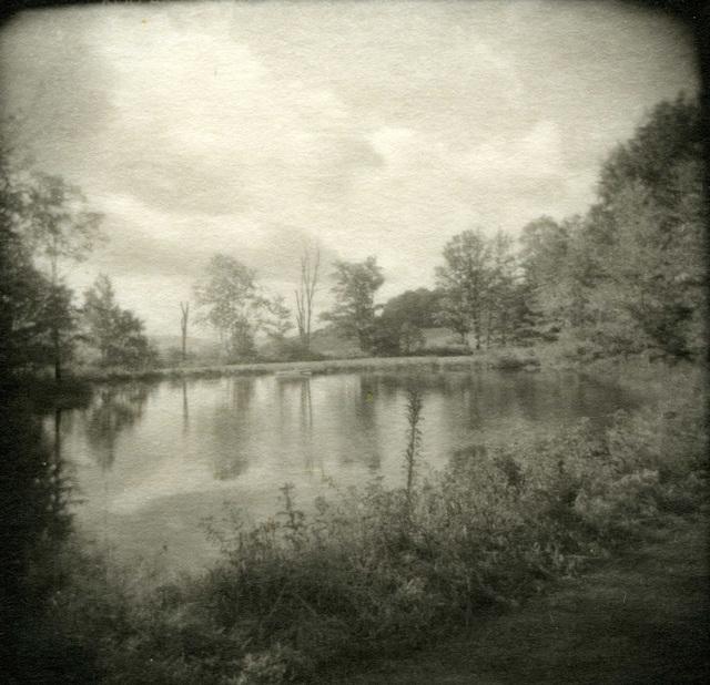 , 'My Pond,' 1998, John Davis Gallery