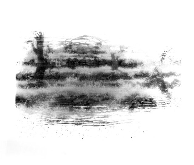 , 'Insights Into Nature,' 2014, Fann- A- Porter