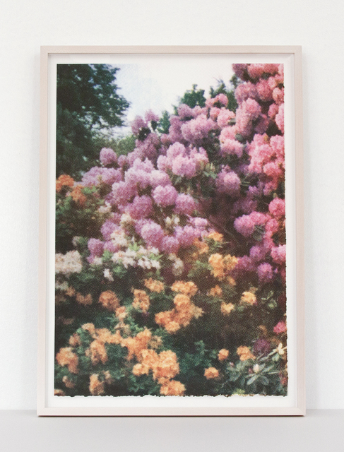 Elizabeth Corkery, 'Pink/Orange Florals', 2013, Print Club Ltd.