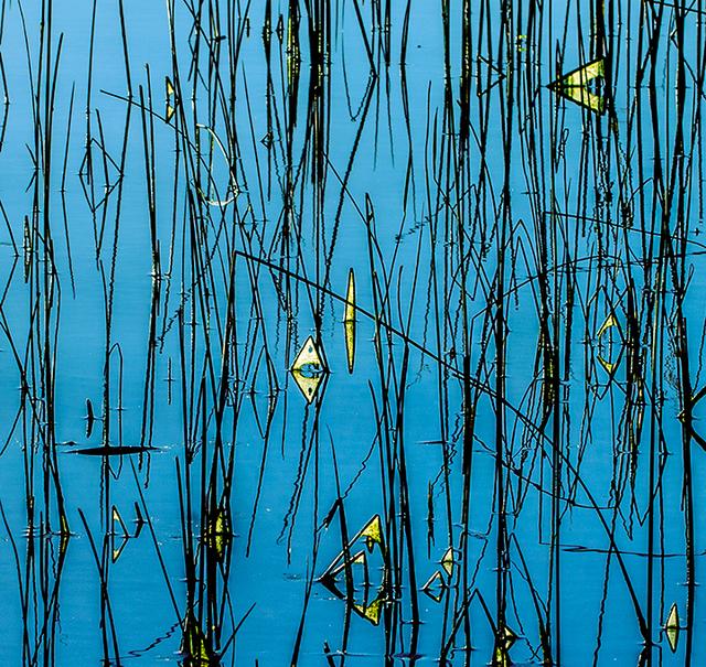 , 'Aubade2,' 2018, Walter Wickiser Gallery
