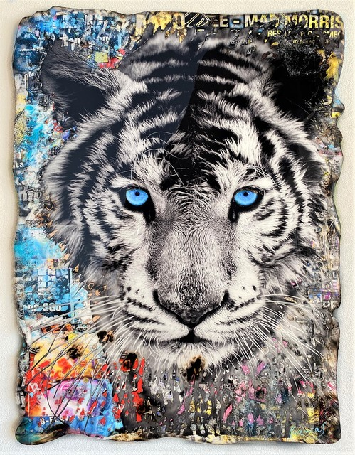 Adriano Cuencas, 'Blue Eyes Tiger', 2020, Painting, Collage & Mixed Media on cardboard, Samhart Gallery