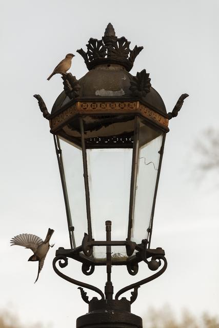 Johan Österholm, 'Lantern Smasher (Wien Mast)', 2018, Monica De Cardenas