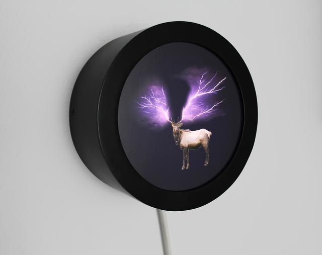 , 'Espejismos: Alce Iluminado,' 2010, Galeria Senda