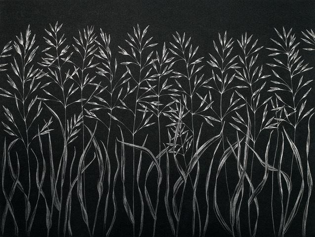 Margot Glass, 'Grasses (3)', 2019, Garvey   Simon