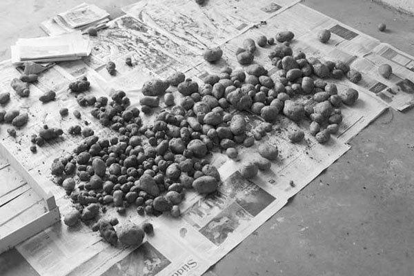 , 'Potatoes on Newspapers, Pesch (Eifel), Germany,' 2007, Dvir Gallery