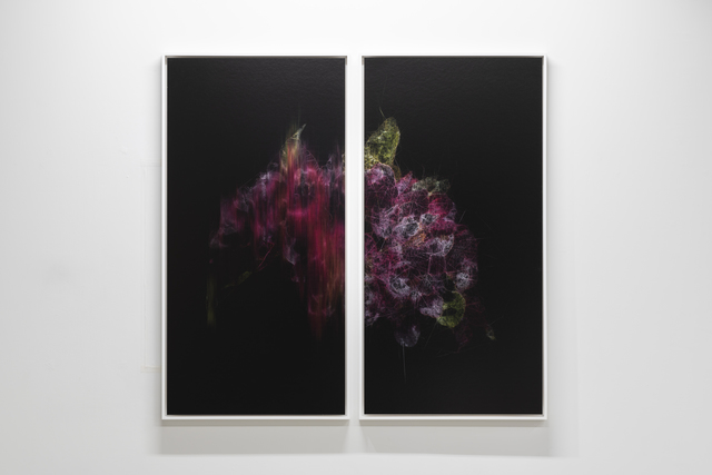 , 'lttrans #5,' 2018, Takuro Someya Contemporary Art
