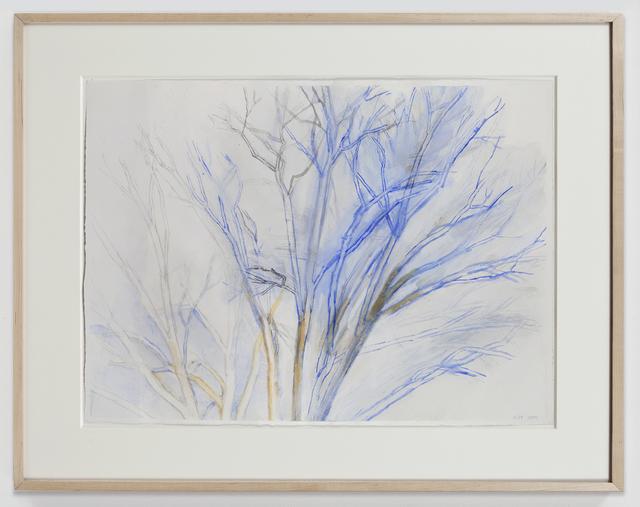 , 'The Pin Oak 4/09,' 2009, Alexander and Bonin