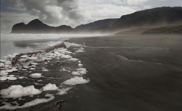 Anthony Goicolea, 'Drift wood', 2013, Carlos Carvalho- Arte Contemporanea