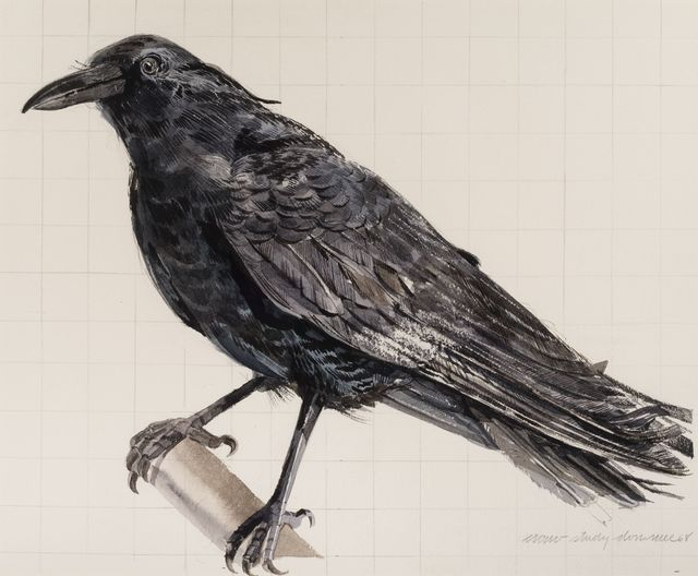 , 'Crow-Study,' 1968, Allan Stone Projects