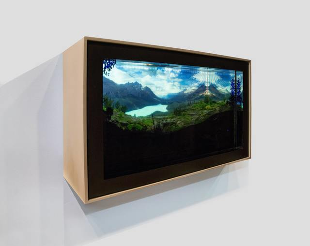 , 'Act of Nature,' 2015, Bryce Wolkowitz Gallery