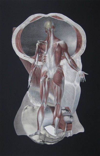 , 'Untitled (Abstract Arrangement of Anatomy),' 1994, Jackson Fine Art
