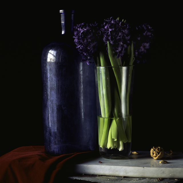 , 'Still Life with Hyacinth and Walnut,' , Pucker Gallery