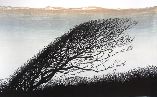 , 'Bent Tree,' , Circle Contemporary