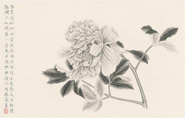 , 'Peony 2 牡丹二,' 2017, Alisan Fine Arts