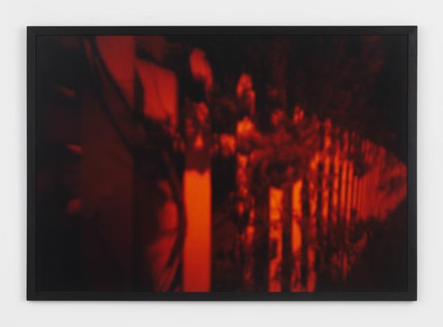 , 'Roses,' 1989, Magenta Plains