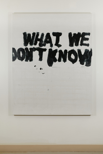 , 'What We Don't Know,' 2018, Federica Schiavo Gallery