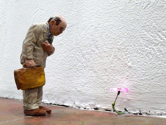 , 'Spring,' 2013, ANNO DOMINI