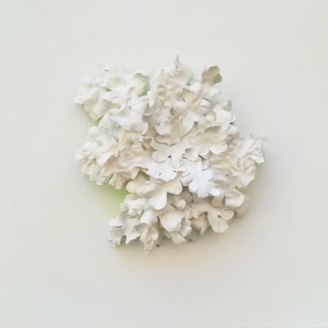 , 'Foliar Lichen I,' 2018, SET ESPAI D'ART