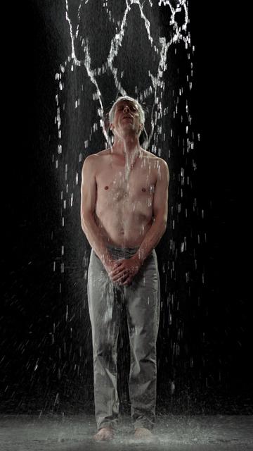, 'Inverted Birth,' 2014, James Cohan