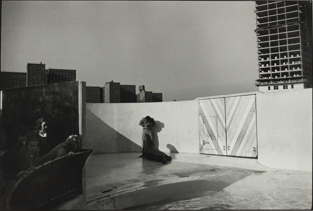 Garry Winogrand, 'New York Aquarium, Coney Island, and New York', Sotheby's