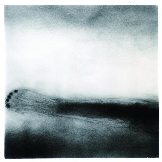 , 'Foot,' 2009, see+ Gallery