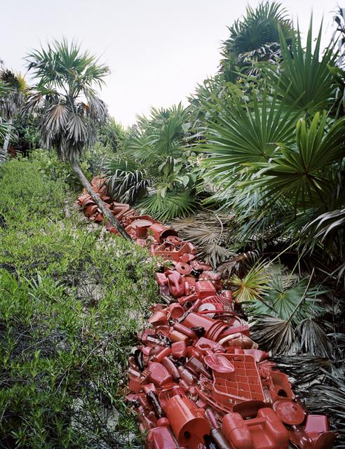 , 'Vena (Vein) Installation,' 2011, Cheryl Hazan Gallery