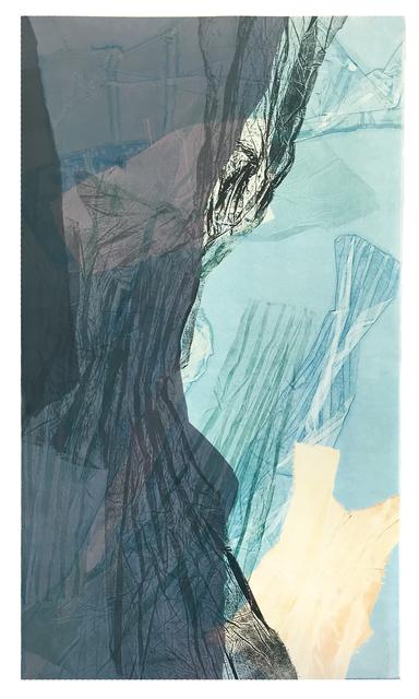 , 'talus integument p1,' 2016, Pele Prints