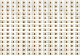 , 'Eggs,' 2013, Fugalternativa Contemporary Art Space