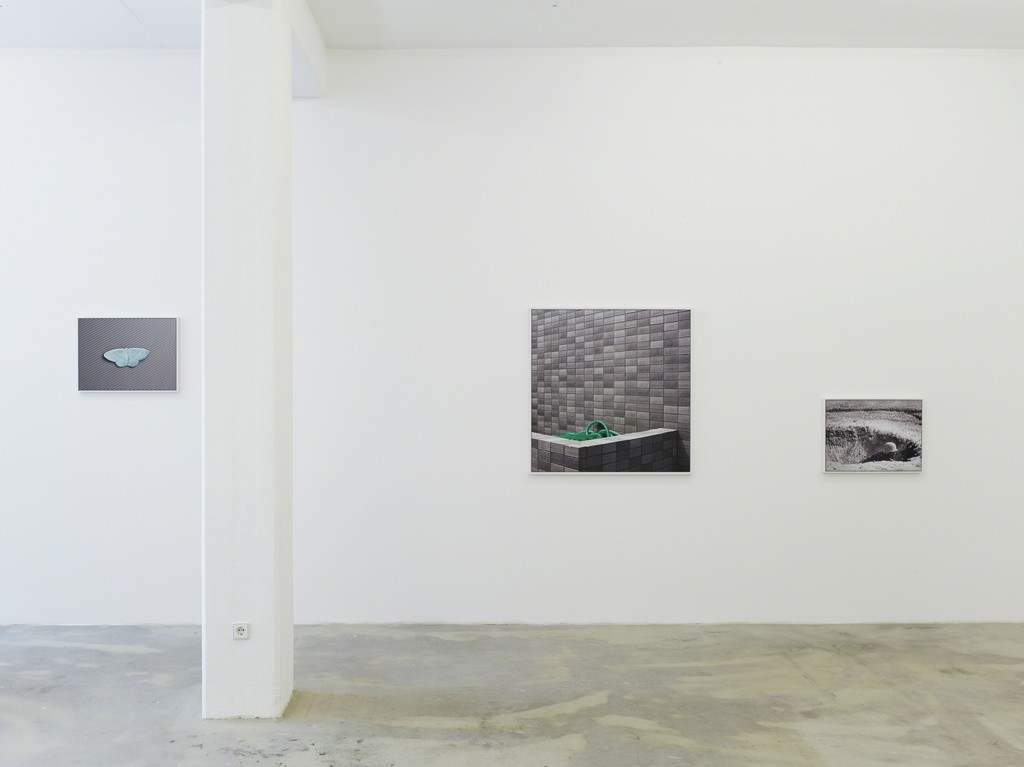 grey cluster, 2014, digital c-print, 62 x 46 cm; 101 x 103 cm; 62 x 46 cm, exhibition view at Klemm's, Berlin 2014