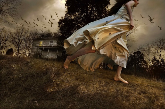 , 'Winged Migration,' 2009, photo-eye Gallery