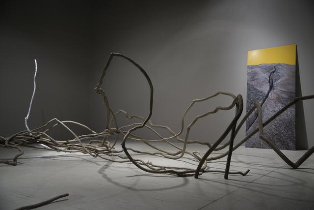 , 'Bittersweet,' 2017, C. Grimaldis Gallery