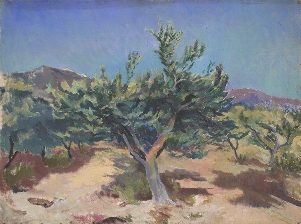 , 'Olive tree, south of France,' ca. 1968, Robert Eagle Fine Art