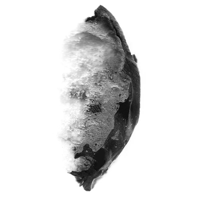 , 'Escaneo 10,' 2017, Terreno Baldío