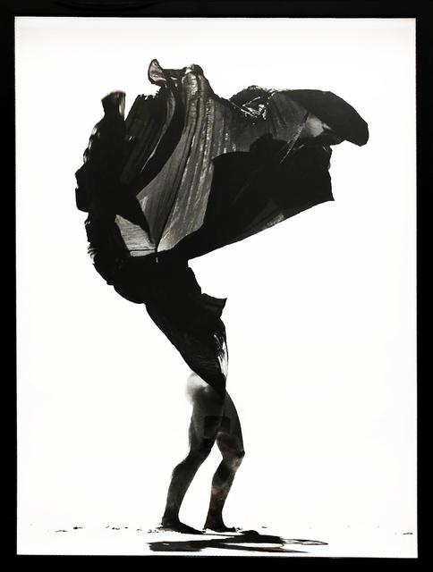 , 'Desert Flower,' 2011, The Art Design Project