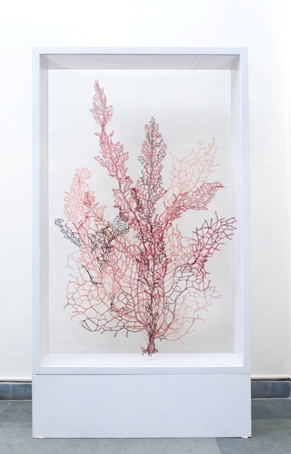 , 'Red Coral ,' 2017, Exhibit 320